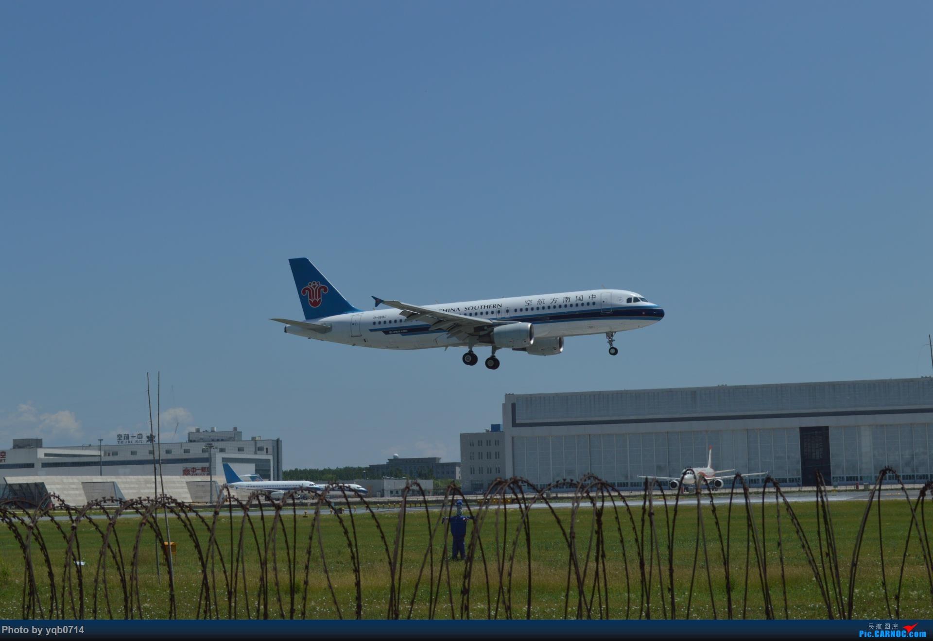 Re:[原创]出来炸道,喜欢星空联盟的小反!!!! AIRBUS A320-200 B-1803