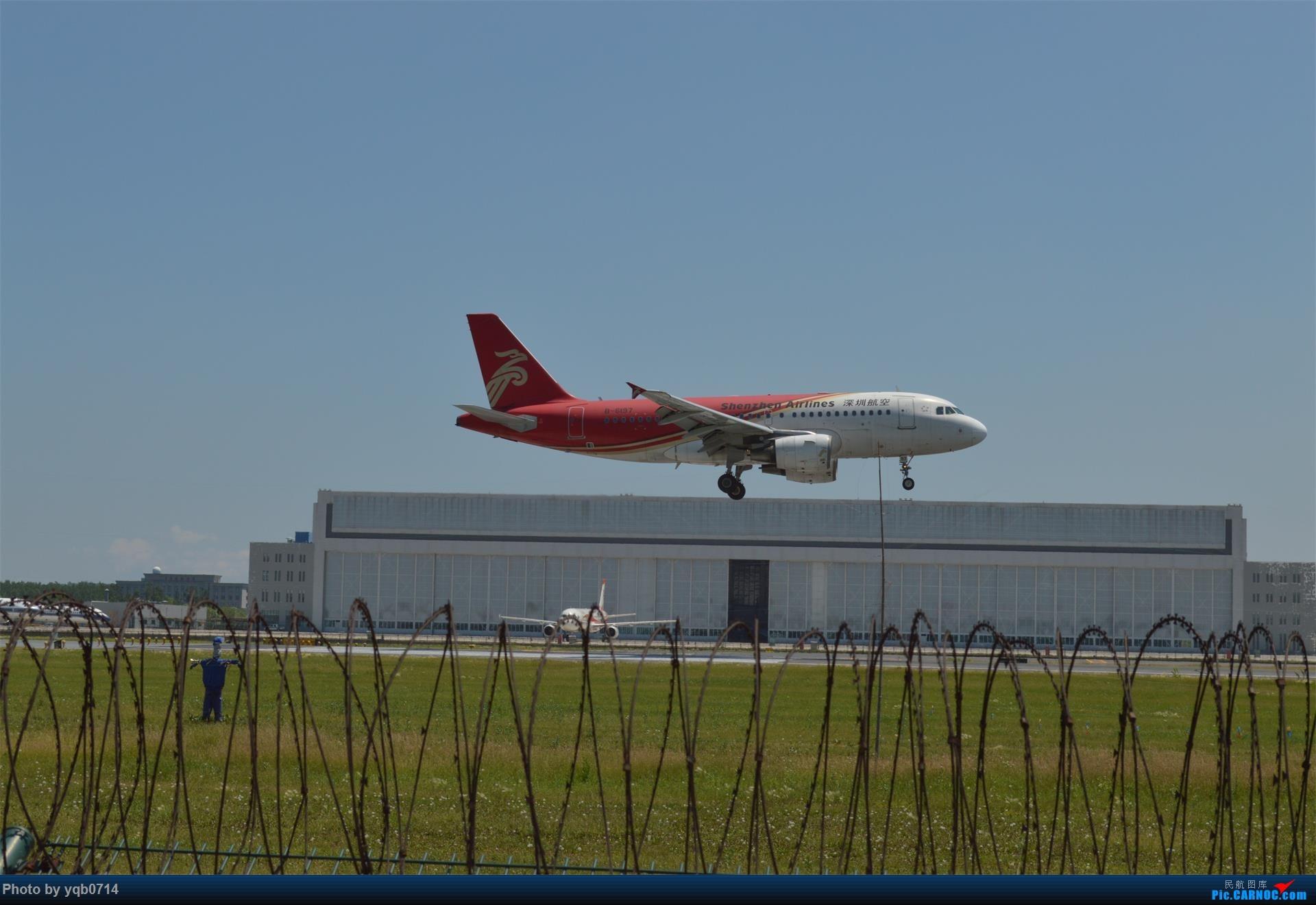 Re:[原创]出来炸道,喜欢星空联盟的小反!!!! AIRBUS A319-100 B-6197 沈阳桃仙