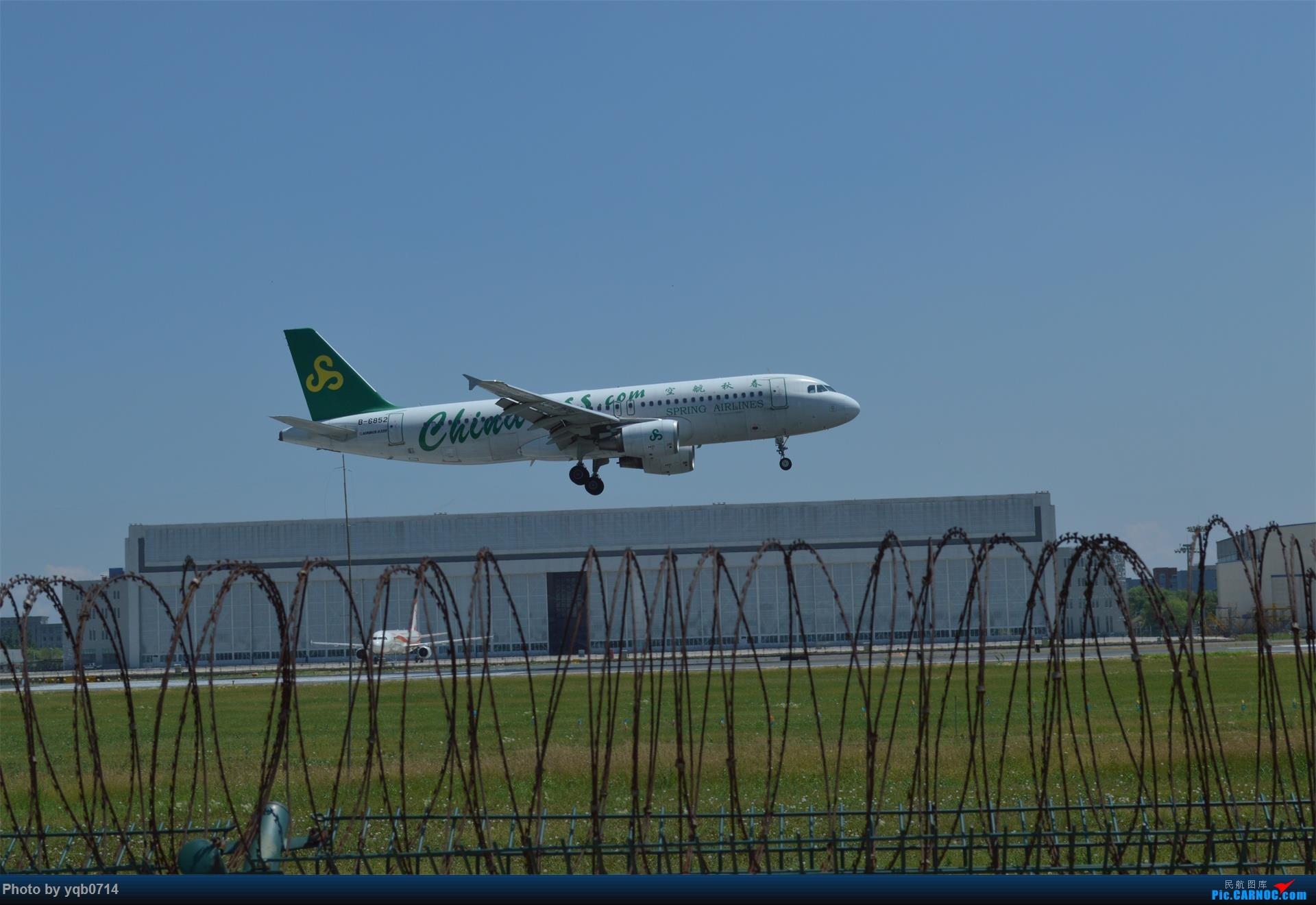 Re:[原创]出来炸道,喜欢星空联盟的小反!!!! AIRBUS A320-200 B-6852 沈阳桃仙