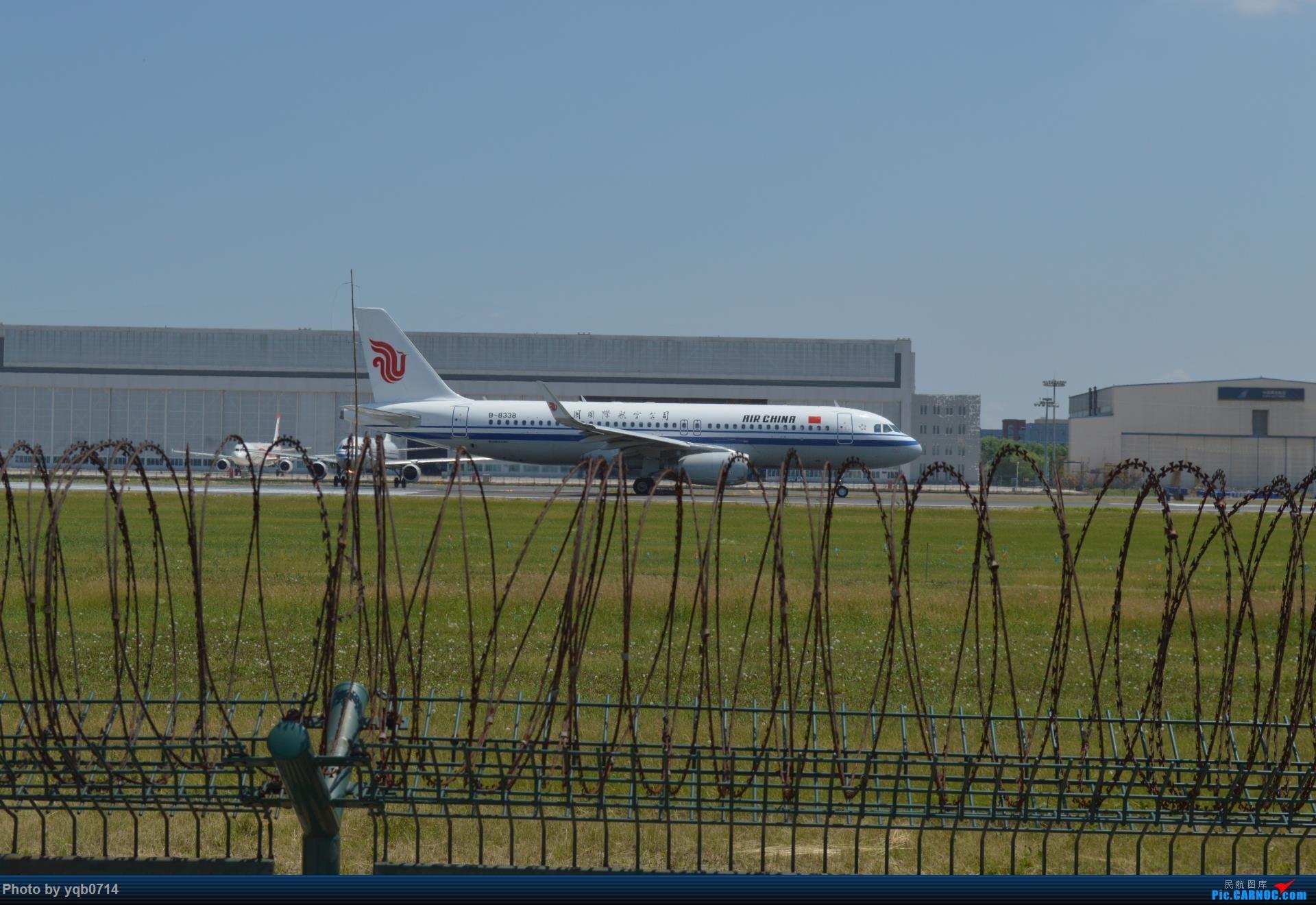 Re:[原创]出来炸道,喜欢星空联盟的小反!!!! AIRBUS A320-200 B-8338 沈阳桃仙
