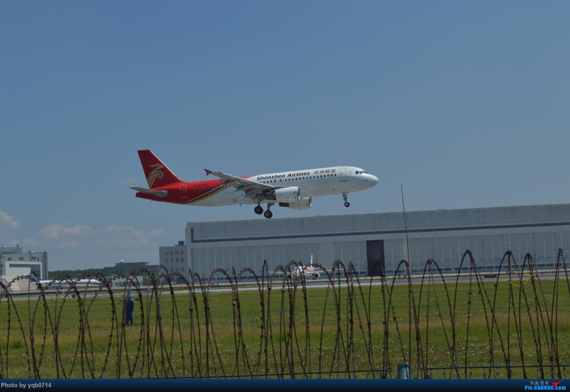 Re:[原创]出来炸道,喜欢星空联盟的小反!!!! AIRBUS A320-200 B-6360 中国沈阳桃仙国际机场
