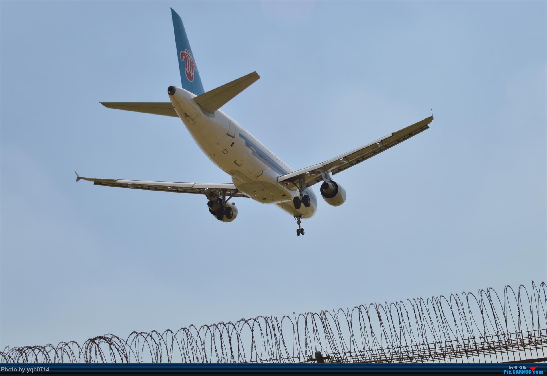 Re:[原创]出来炸道,喜欢星空联盟的小反!!!! AIRBUS A320-200 B-6739 中国沈阳桃仙国际机场