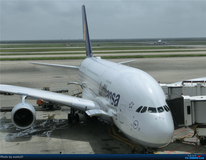 Re:[原创]【Mitchell的飞行时光】四段少见的GA游记,多灾多难的巴厘岛之行(持续更新中) AIRBUS A380-800  中国上海浦东国际机场