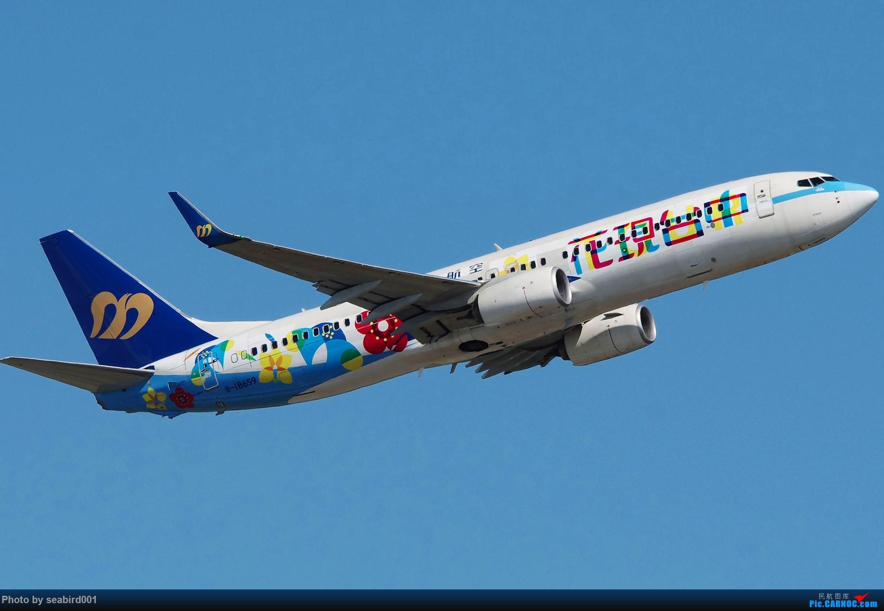 [原创]花现台中 BOEING 737-800 B-18659 中国香港国际机场