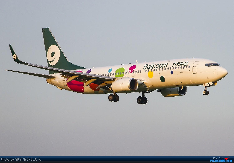 Re:[原创]【ZYTX】最近又来了不少好货(新加坡货航,美联航319,七月份新来的红土航空,还有几个今年还没拍到的。) BOEING 737-800 B-6992 中国沈阳桃仙国际机场