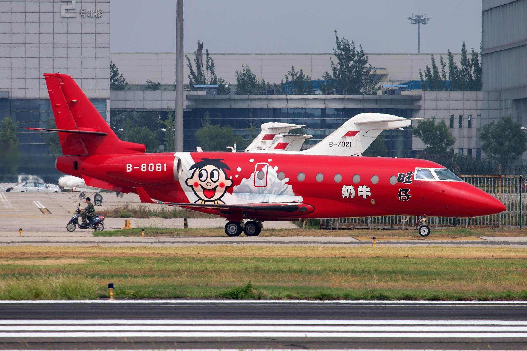 [原创][一图党] 奶牛 (解决有无、忽略地热) 1800*1200 GULFSTREAM G200 B-8081 中国北京首都国际机场