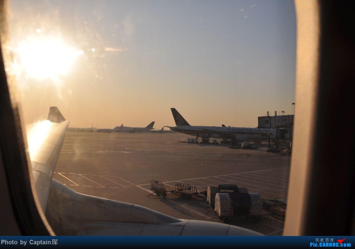 [原创]重度拖延症之香港转机贴 AIRBUS A330-200 B-LNC 中国上海浦东国际机场