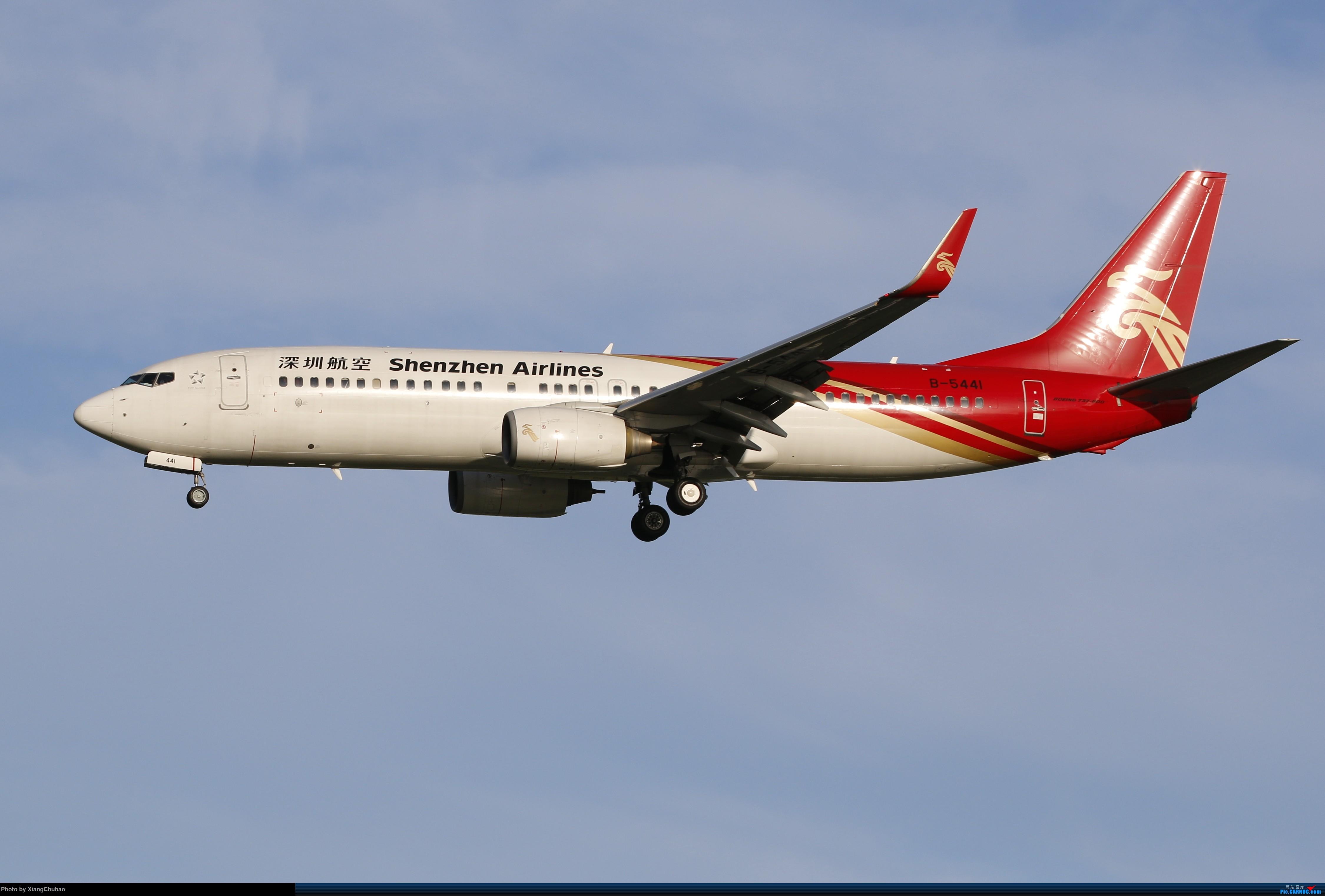 温州龙湾国际机场 BOEING 737-800 B-5441 中国温州龙湾国际机场