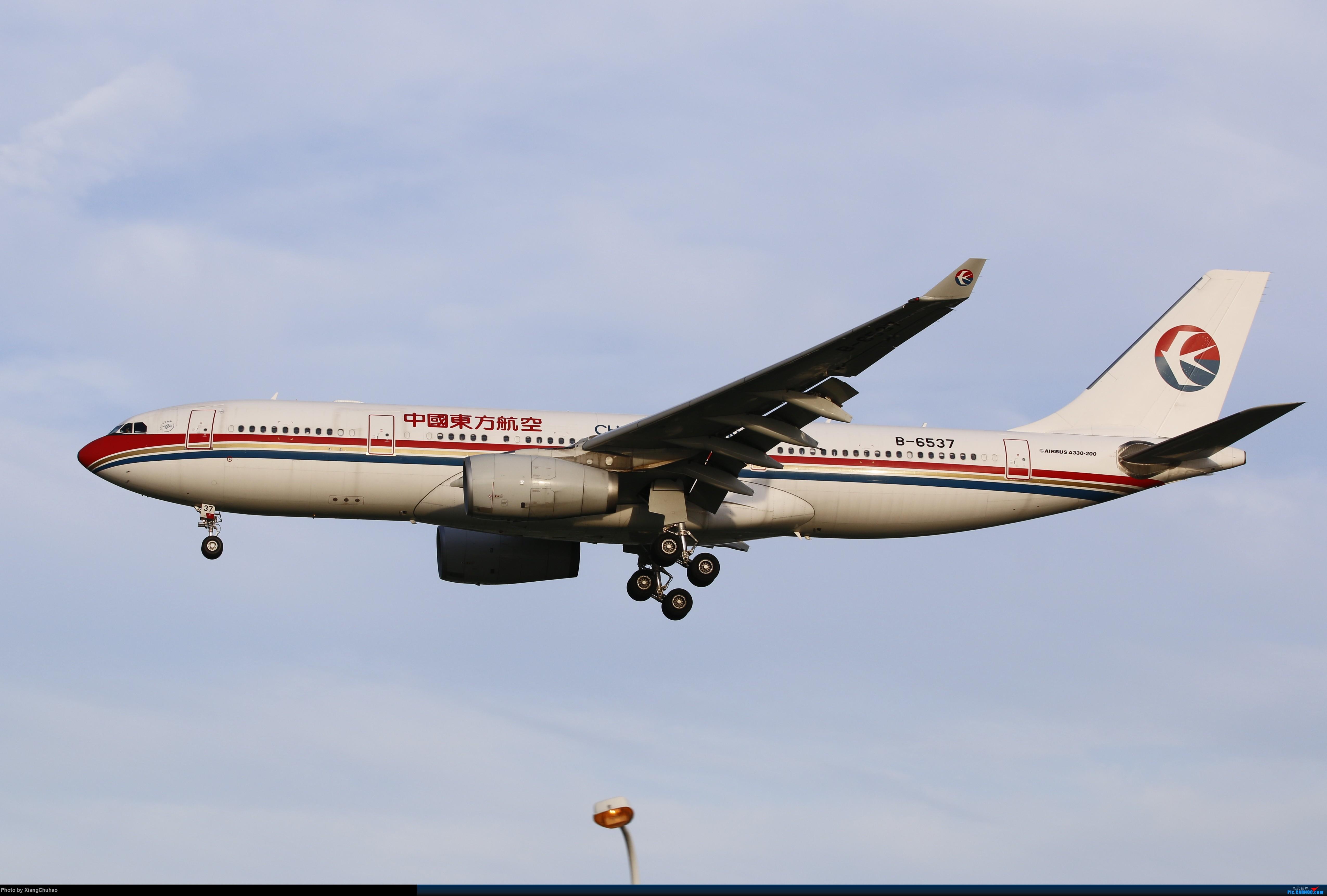 温州龙湾国际机场 AIRBUS A330-200 B-6537 中国温州龙湾国际机场