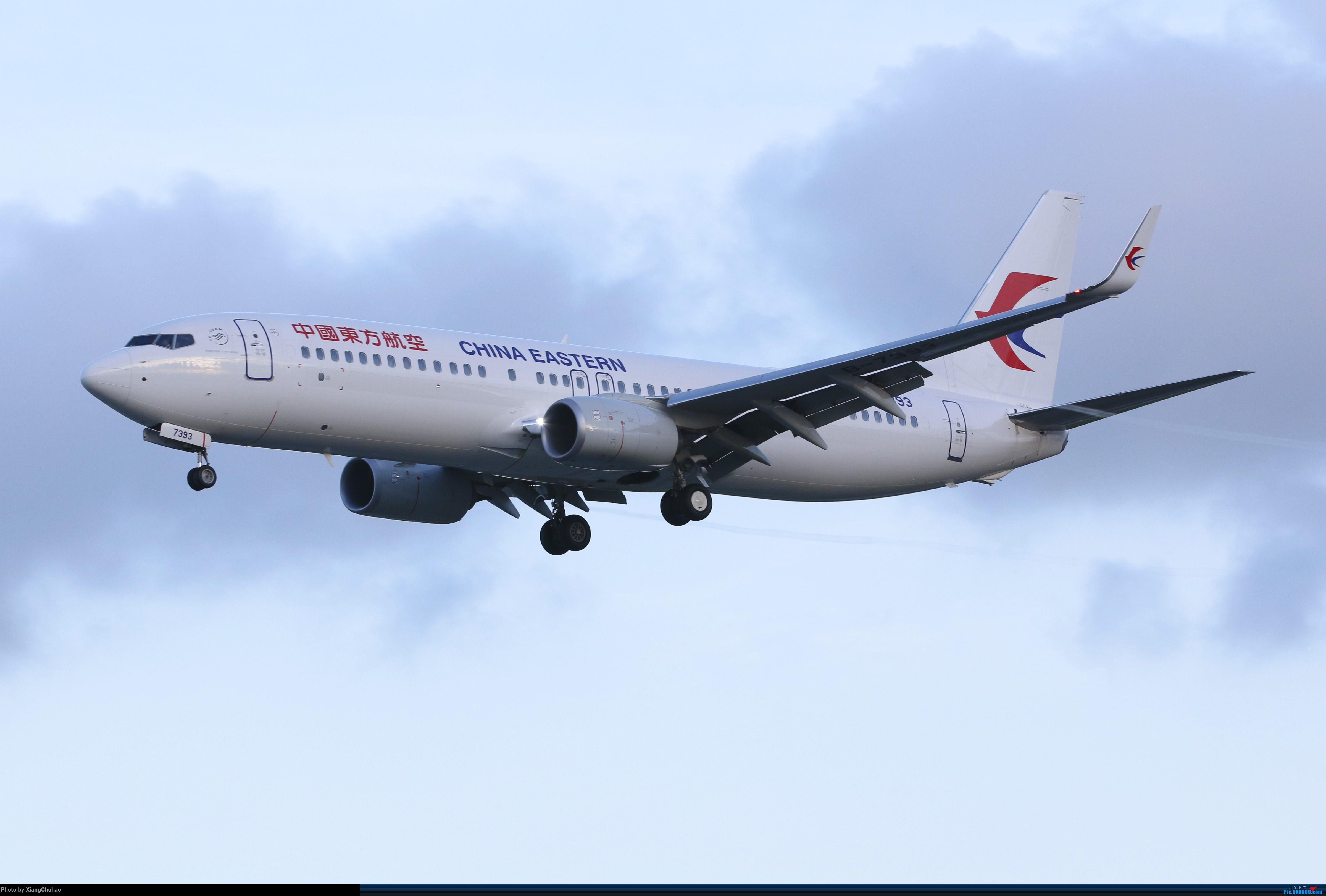 温州龙湾国际机场 BOEING 737-800 B-7393 中国温州龙湾国际机场