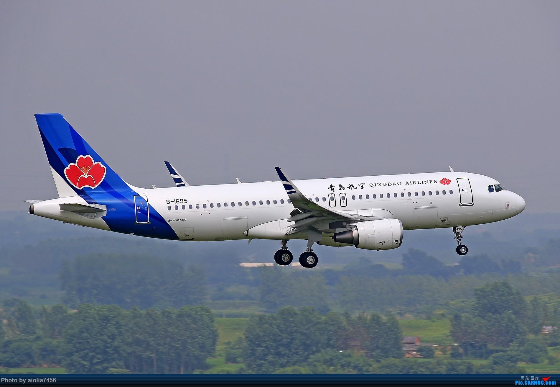 Re:[原创]新桥桑拿天,上塔晒晒,我要古铜色~! AIRBUS A320-200 B-1695 中国合肥新桥国际机场