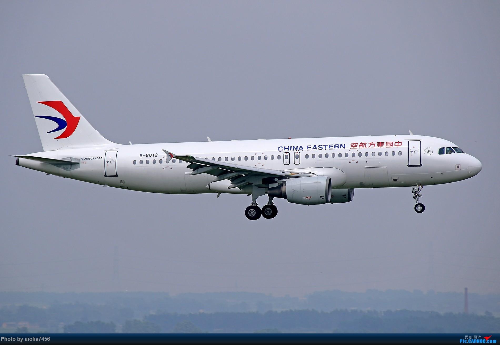 Re:[原创]新桥桑拿天,上塔晒晒,我要古铜色~! AIRBUS A320-200 B-6012 中国合肥新桥国际机场