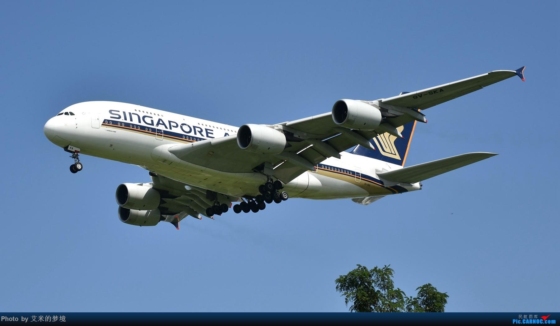 [原创]【carnoc重庆飞友会】北京送行,所见飞行【含少量夜景】 AIRBUS A380-800 9V-SAK 中国北京首都国际机场