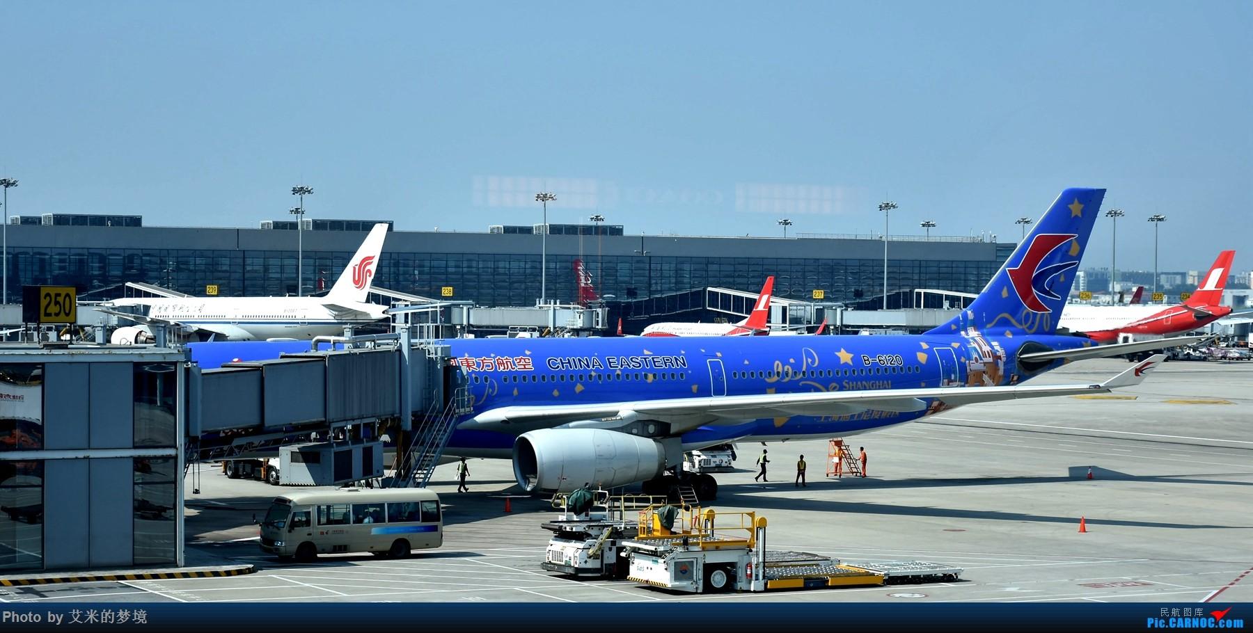 Re:[原创]【carnoc重庆飞友会】北京送行,所见飞行 AIRBUS A330-300 B-6120 中国上海虹桥国际机场