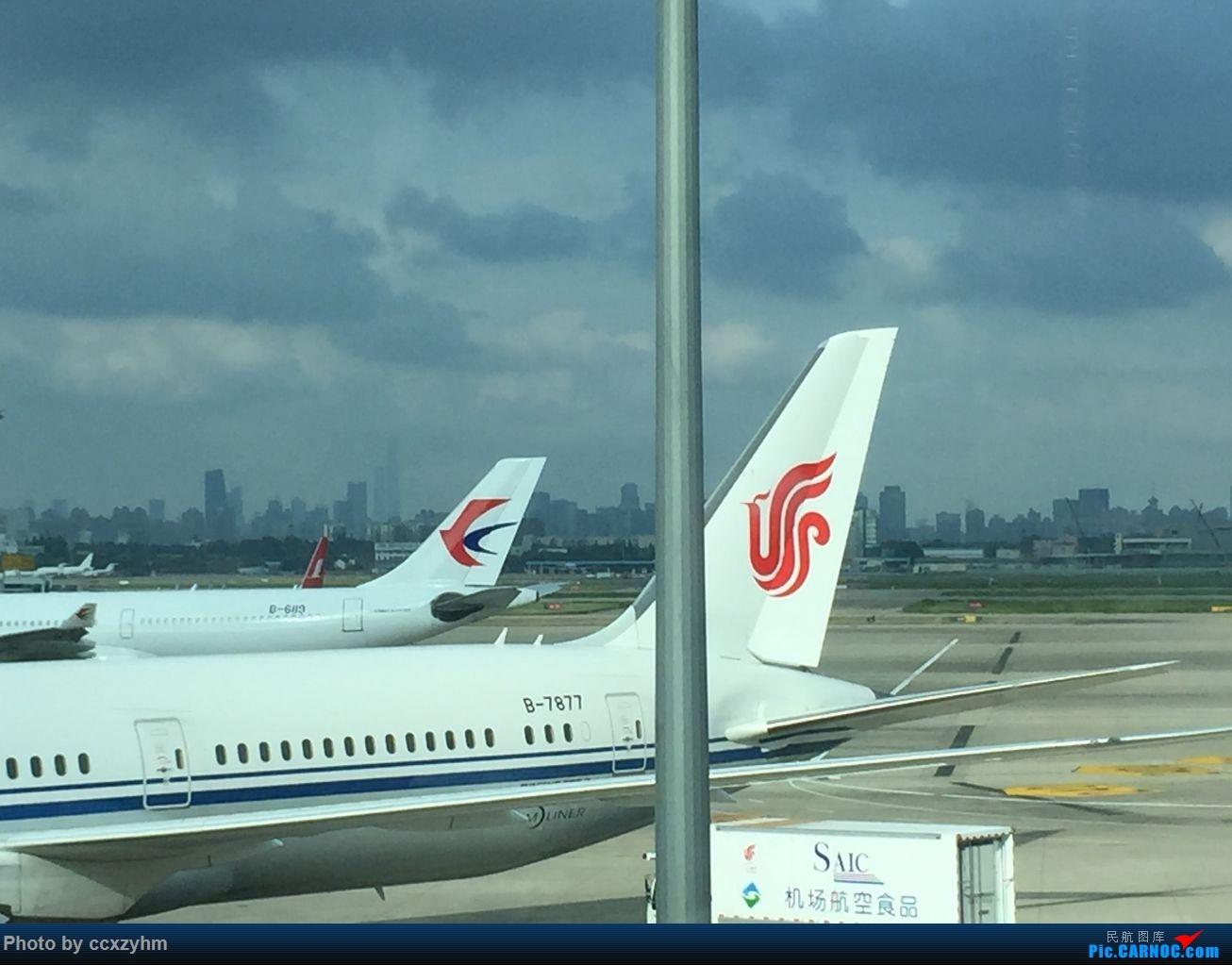 [原创]论坛首发 京沪线上的国航789 高二升高三暑假短Break 空铁联运去北京 第一个猜对酒店5架小飞机 BOEING 787-9 B-7877 SHA