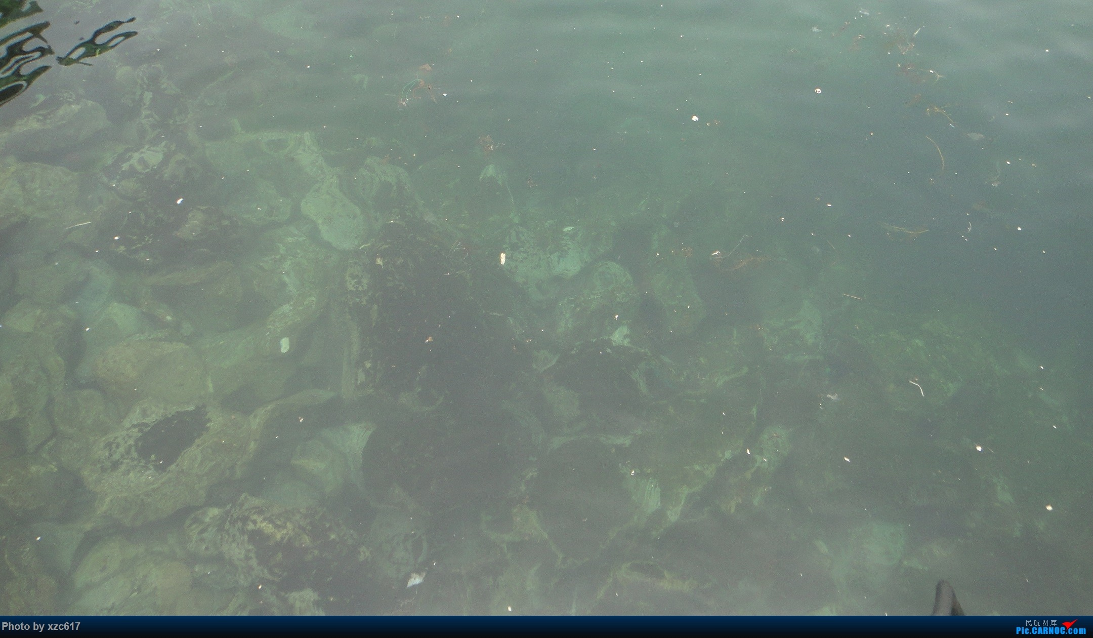 Re:[原创][xzc617的飞行游记 NO.1] 由扬州到大连,平生第一次游海岛
