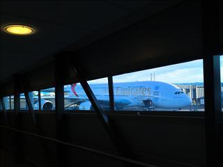 Re:【 阿联酋航   墨尔本-奥克兰   A380 公务舱 】