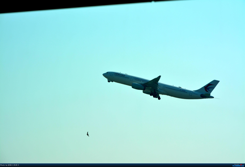 Re:[原创]迟到帖--空铁联运,空客380商务舱初体验 AIRBUS A330-300 B-6085