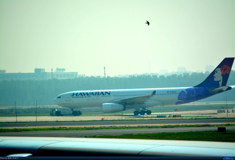 Re:[原创]迟到帖--空铁联运,空客380商务舱初体验 AIRBUS A330-200