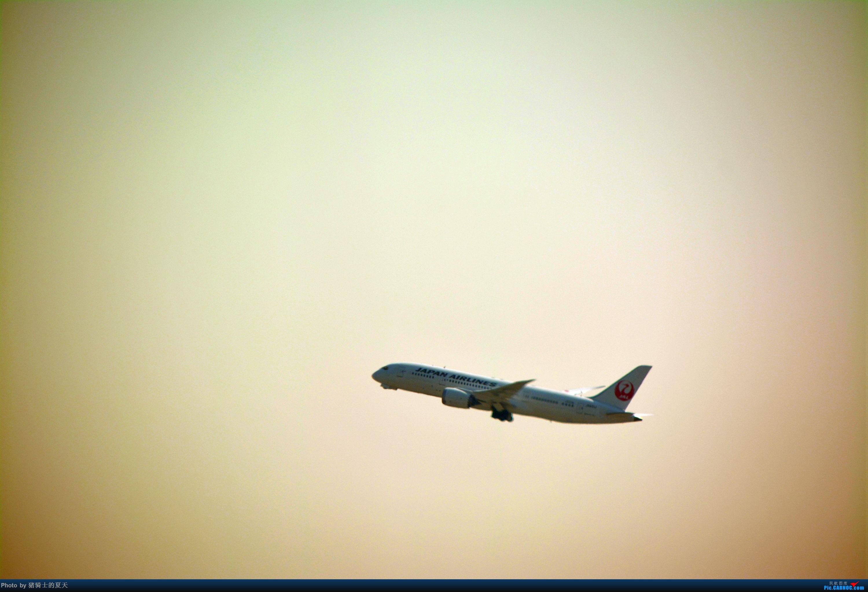 Re:[原创]迟到帖--空铁联运,空客380商务舱初体验 BOEING 787-8