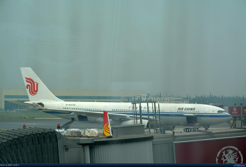 Re:[原创]迟到帖--空铁联运,空客380商务舱初体验 AIRBUS A330-200 B-6072
