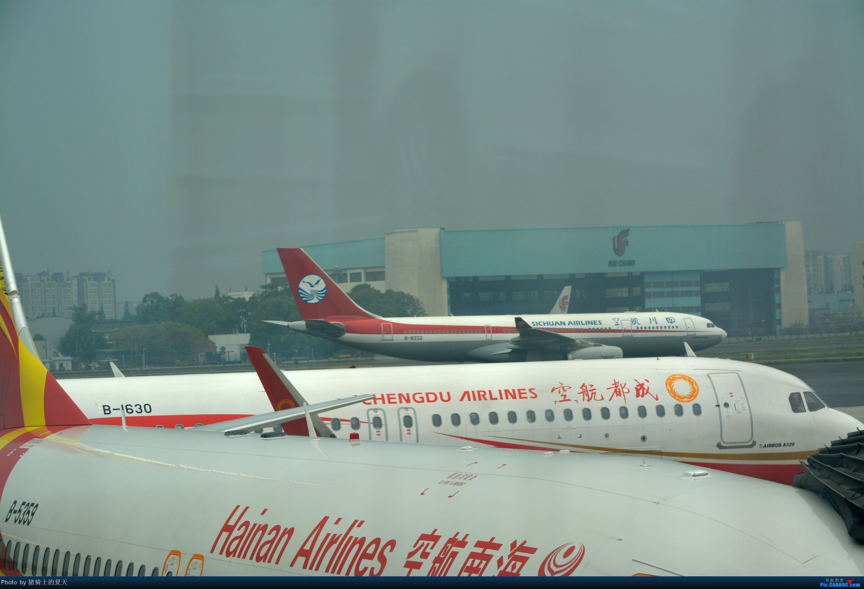 Re:[原创]迟到帖--空铁联运,空客380商务舱初体验 AIRBUS A330-200 B-8332