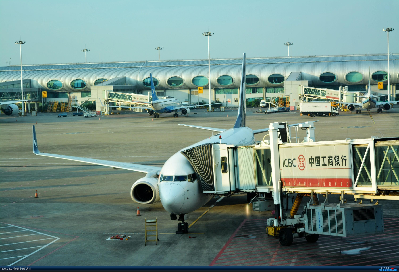 Re:[原创]迟到帖--空铁联运,空客380商务舱初体验 BOEING 737-800 B-5782
