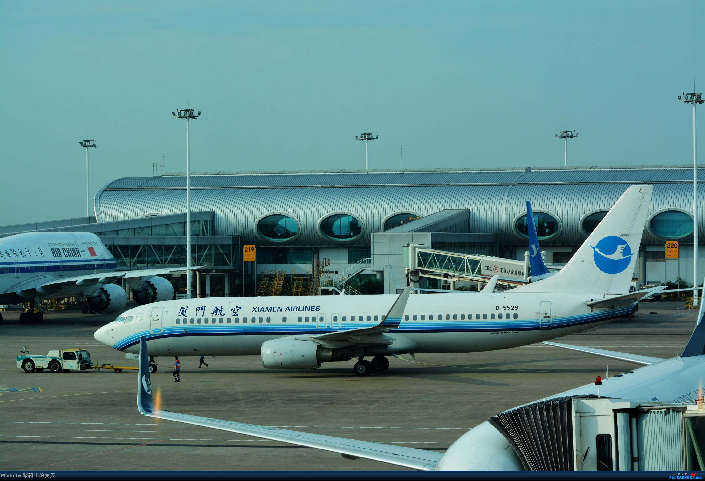 Re:[原创]迟到帖--空铁联运,空客380商务舱初体验 BOEING 737-800 B-5529