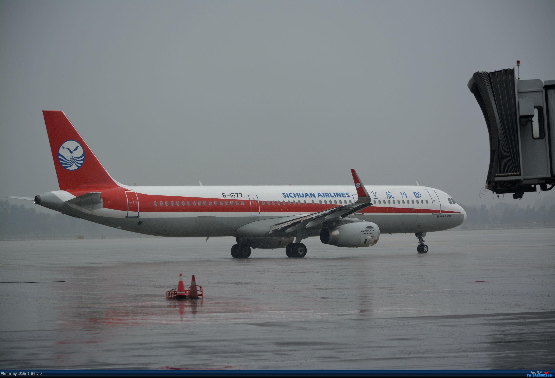 Re:[原创]迟到帖--空铁联运,空客380商务舱初体验 AIRBUS A321-200 B-1677