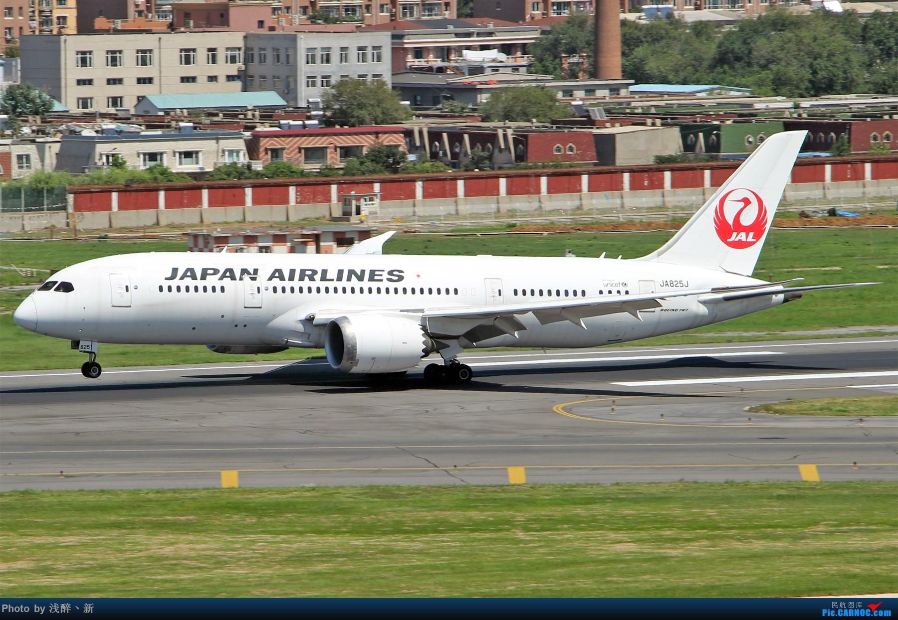 Re:[原创]DLC 8.26 日常[补] BOEING 787-8 JA825A 中国大连国际机场