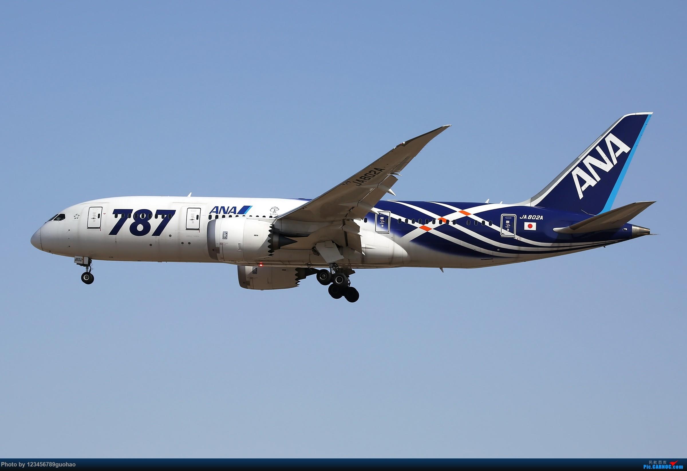 一只丝袜 BOEING 787-8 JA802A 北京首都机场