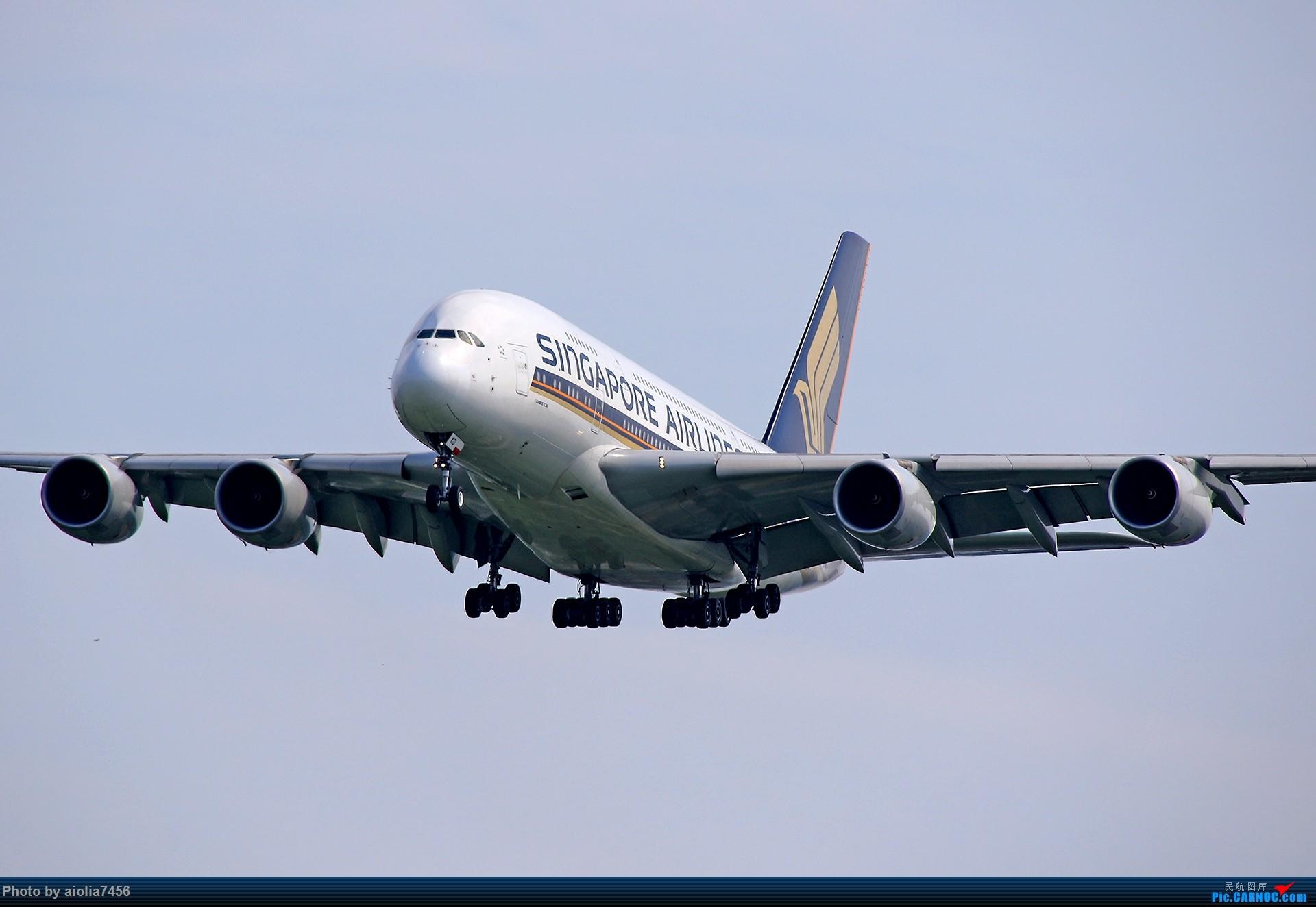 [原创]合肥飞友会[霸都飞友会]冷风过境,吹回了久违的蓝天,而我刚刚好路过PEK AIRBUS A380-800 9V-SKD 中国北京首都国际机场