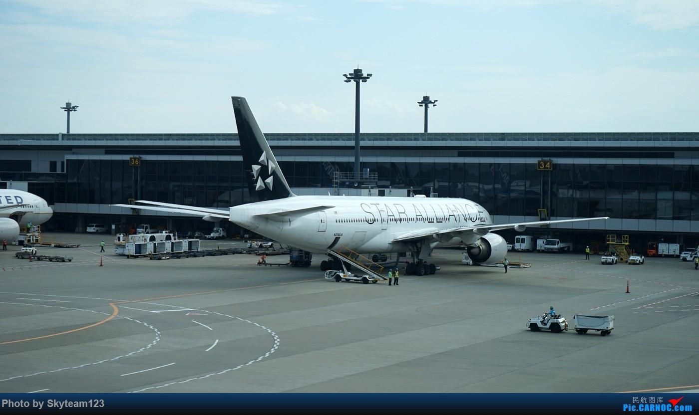 Re:[原创]《Simon游记》第四季第四集 NH934 NRT-CAN 夕阳航班,日本大五星全日空763的美好体验 附上大阪京都东京少许游玩照片 B777-300ER JA778A