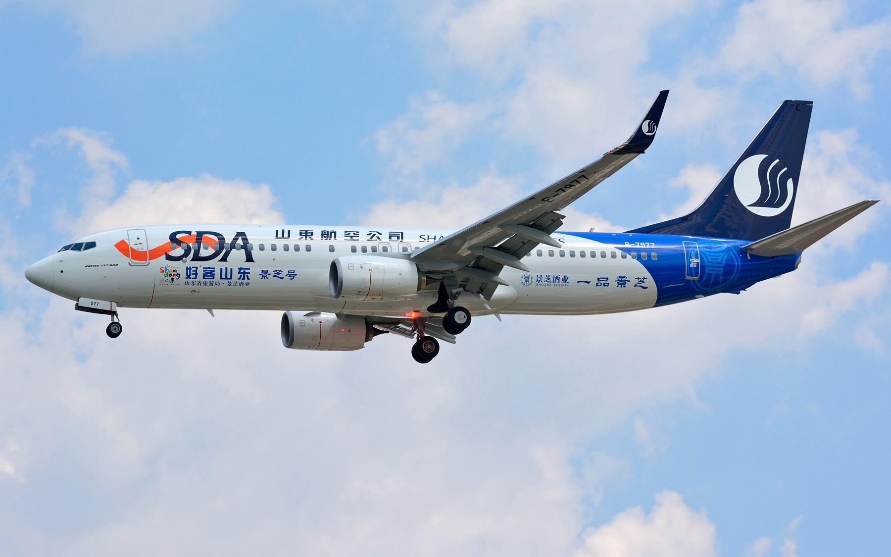 [原创]【SHA】山东航空第一架景芝号彩绘 B-7977 BOEING 737-800 B-7977 中国上海虹桥国际机场