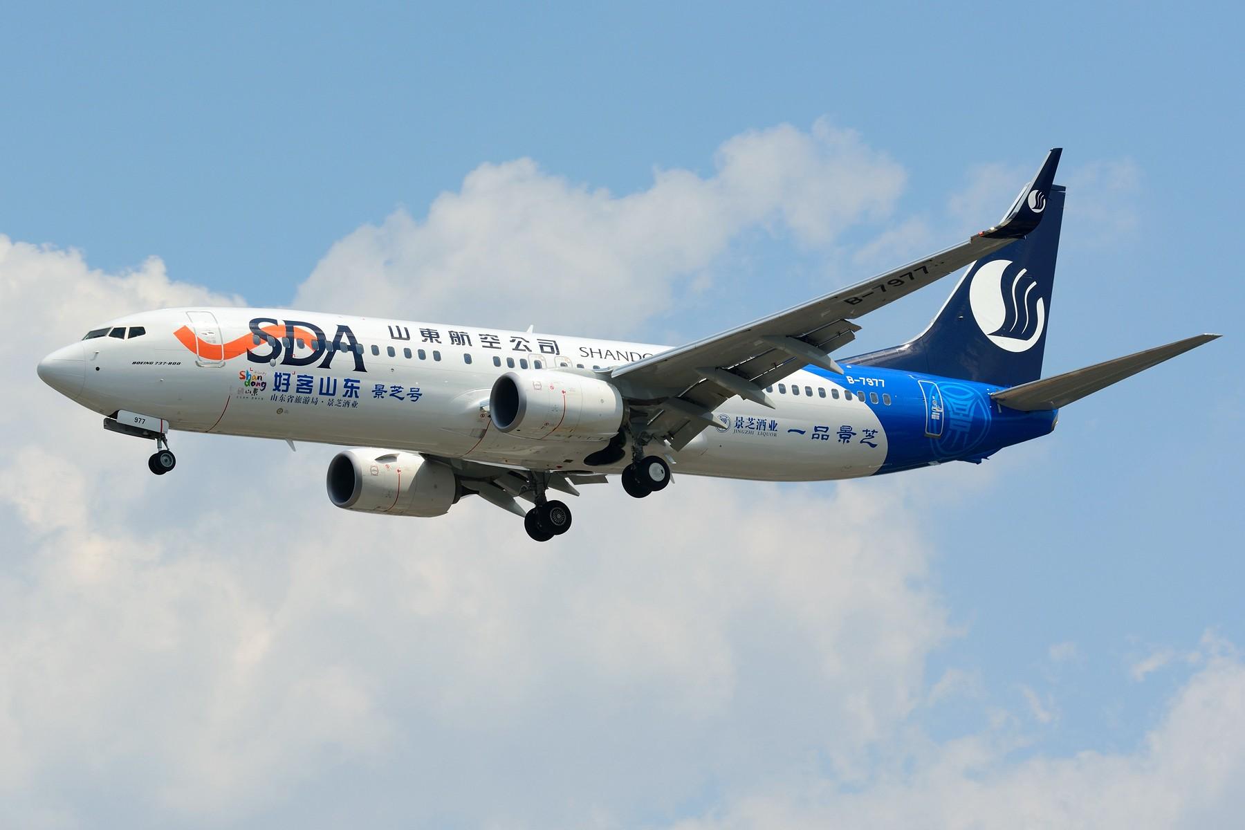 Re:[原创]【SHA】山东航空第一架景芝号彩绘 B-7977 BOEING 737-800 B-7977 中国上海虹桥国际机场