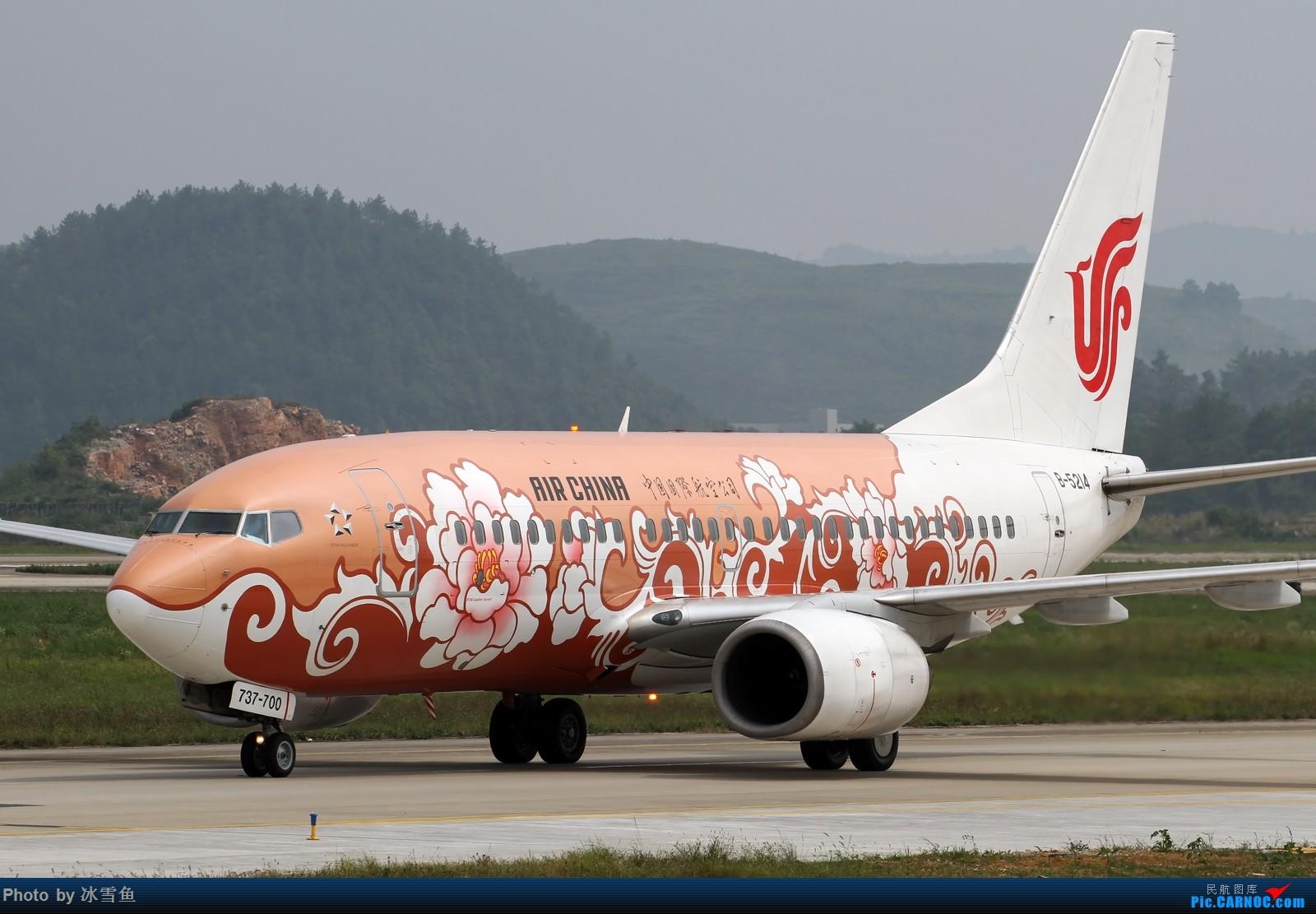 Re:[原创]【BLDDQ】贵阳龙洞堡,候机时拍几张,同时回味滑行道边曾经的拍机位 BOEING 737-700 B-5214 中国贵阳龙洞堡国际机场