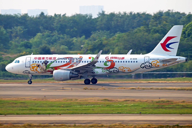 Re:[原创]【BLDDQ】******鲜活----海航乐视彩绘****** AIRBUS A320-200 B-1609 中国南京禄口国际机场