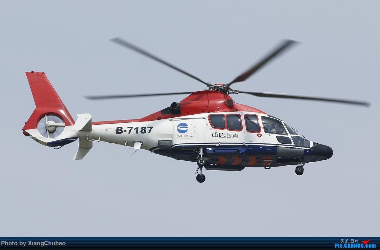 Re:[原创]中信海直 EUROCOPTER EC155B1 B-7187 中国温州龙湾国际机场