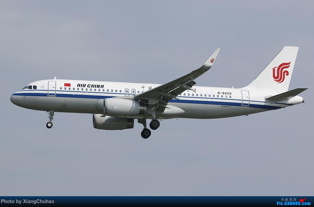 Re:[原创]国航 AIRBUS A320-200 B-8429 中国温州龙湾国际机场