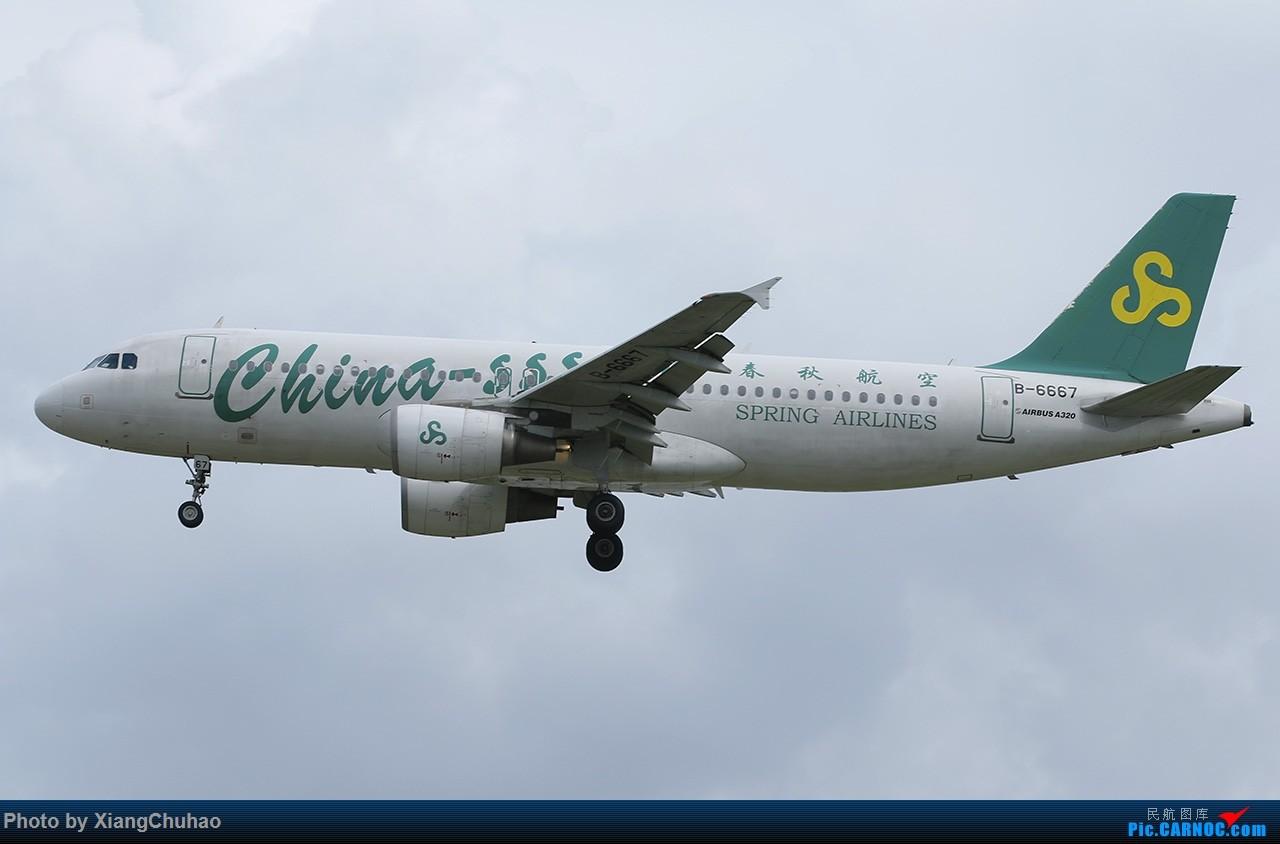 Re:[原创]春秋航空 AIRBUS A320-200 B-6667 中国温州龙湾国际机场