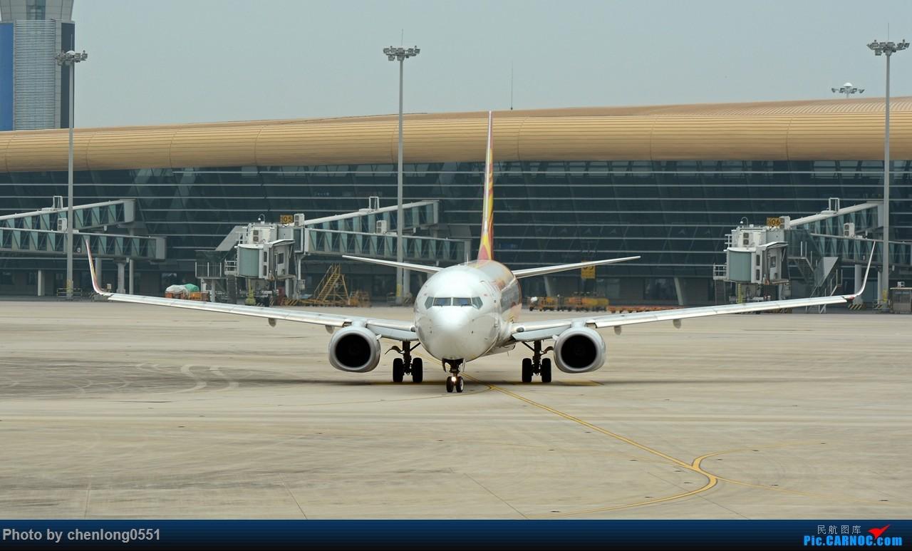 Re:[原创]【合肥飞友会·霸都打机队】一些见过的和一些没见过的 BOEING 737-800 B-1793 中国合肥新桥国际机场