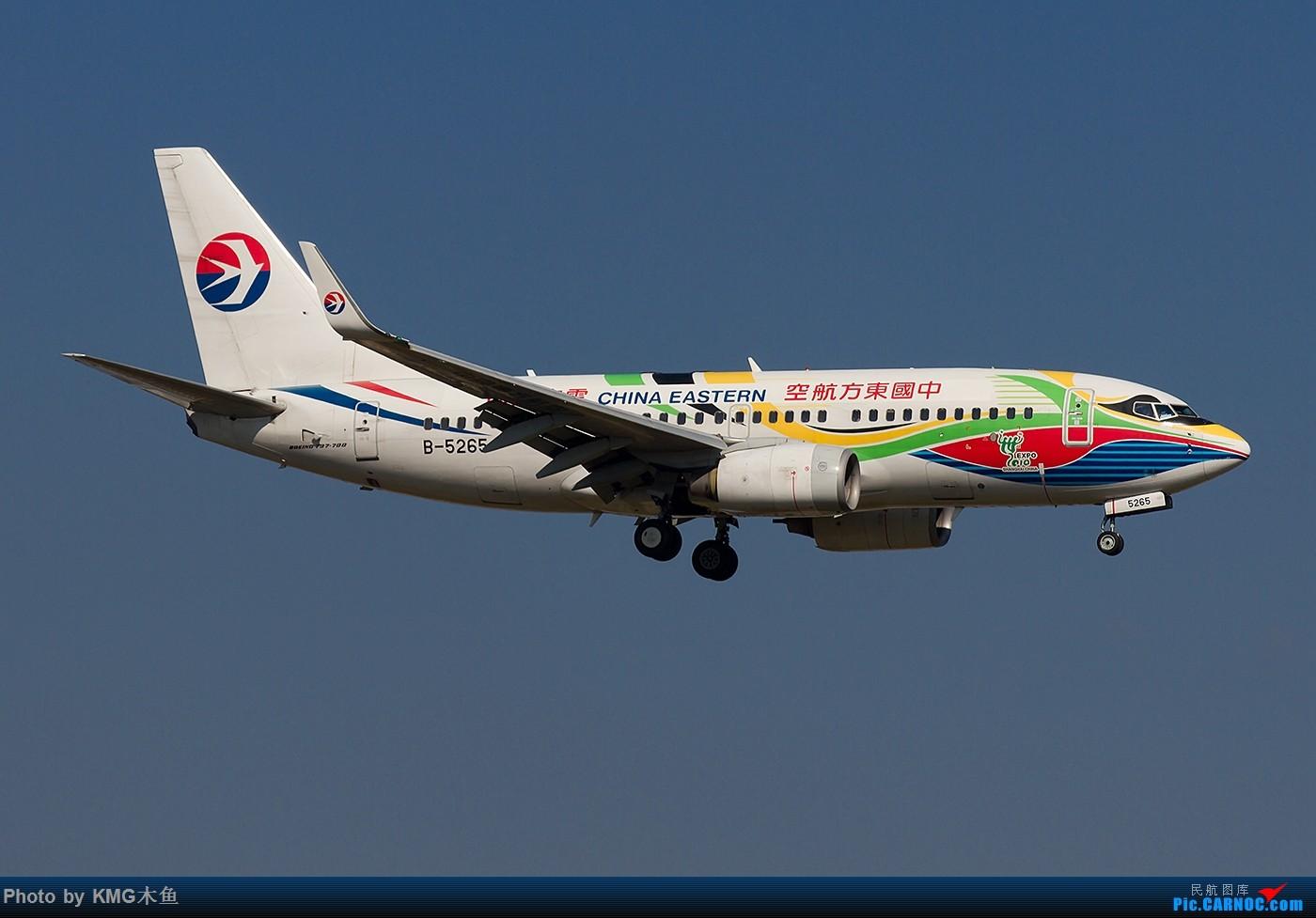 Re:[原创]【昆明长水国际机场-KMG木鱼拍机】啥时候能晴天,我想拍飞机了 BOEING 737-700 B-5265 中国昆明长水国际机场