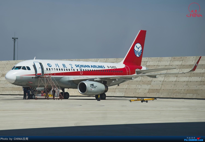 Re:[原创]【SHE】拍飞机的乐趣2 AIRBUS A319-100 B-6455 中国沈阳桃仙国际机场
