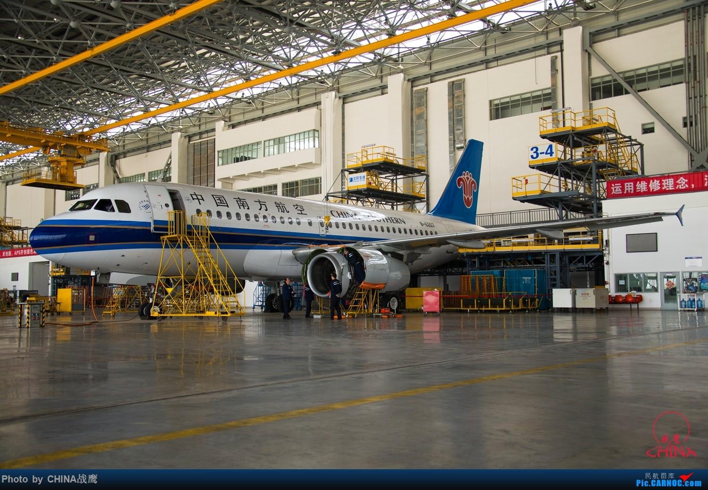 Re:[原创]【SHE】拍飞机的乐趣2 AIRBUS A319-100 B-6207 中国沈阳桃仙国际机场