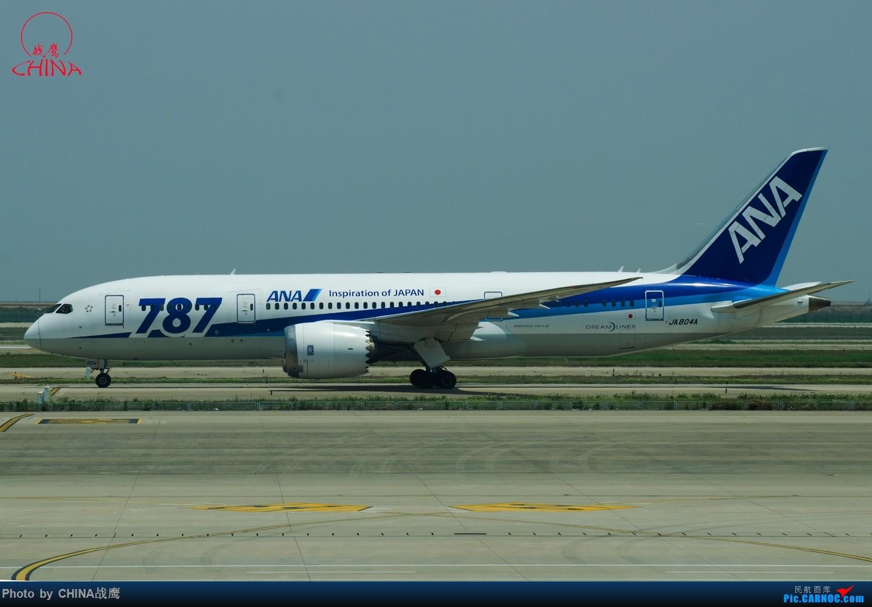 Re:[原创]【SHE】拍飞机的乐趣2 BOEING 787 JA804A 中国上海浦东国际机场