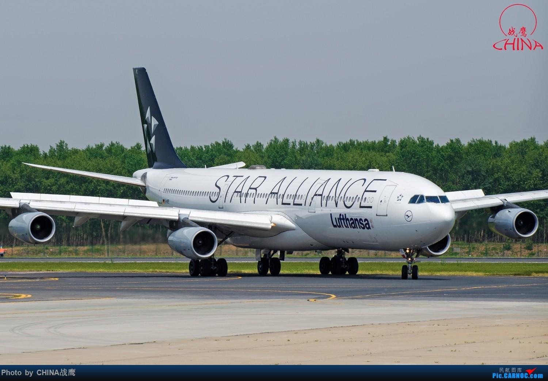 Re:[原创]【SHE】拍飞机的乐趣2 AIRBUS A340-300 D-AIFE 中国沈阳桃仙国际机场