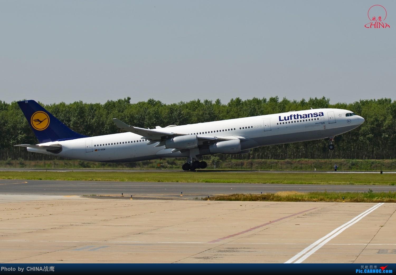 Re:[原创]【SHE】拍飞机的乐趣2 AIRBUS A340-300 D-AIGW 中国沈阳桃仙国际机场