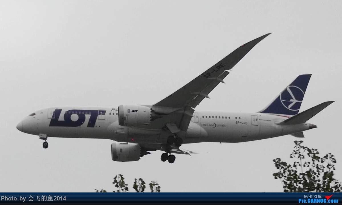 Re:[原创]10月5日首都机场拍机 788