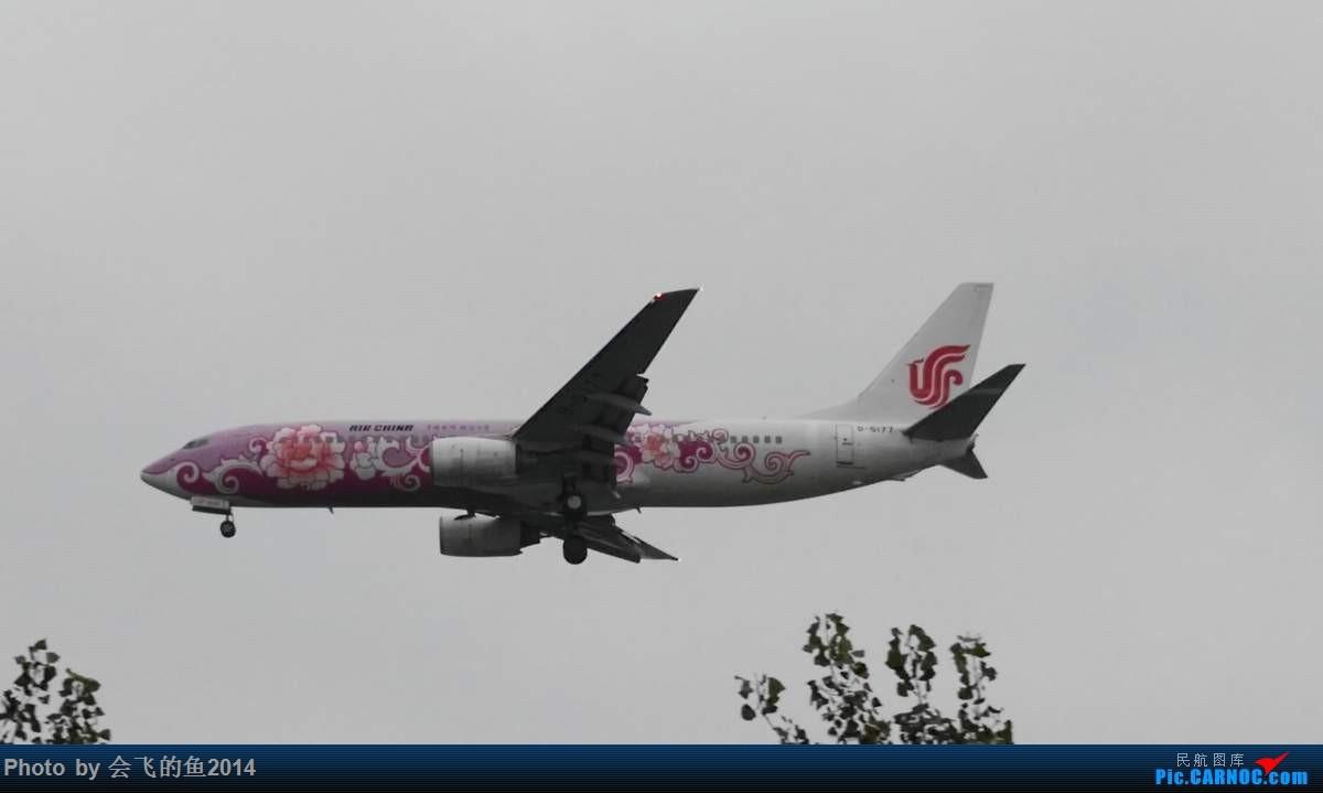 Re:[原创]10月5日首都机场拍机 738