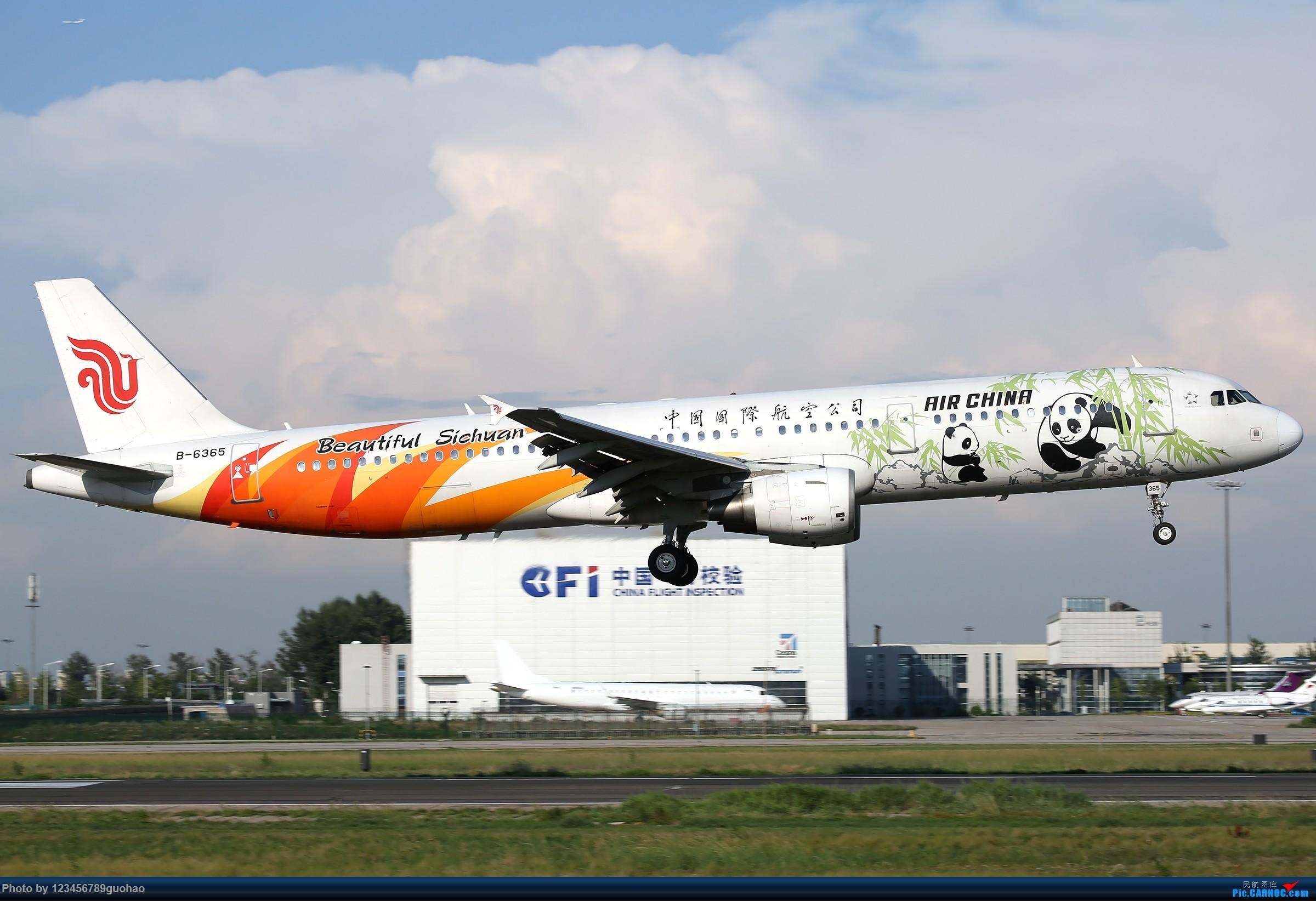 [原创]俩猫儿-炸 AIRBUS A321-200 B-6365 北京首都国际机场